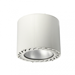 100w LED HiPo Surface Mounted Down Light
